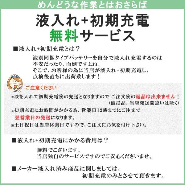 hitachi-TuflongG3-S-105