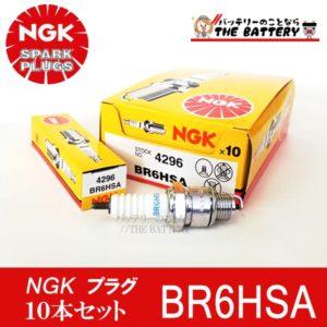 br6hsa-10set