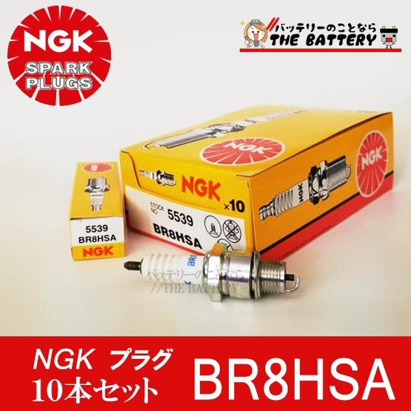 br8hsa-10set